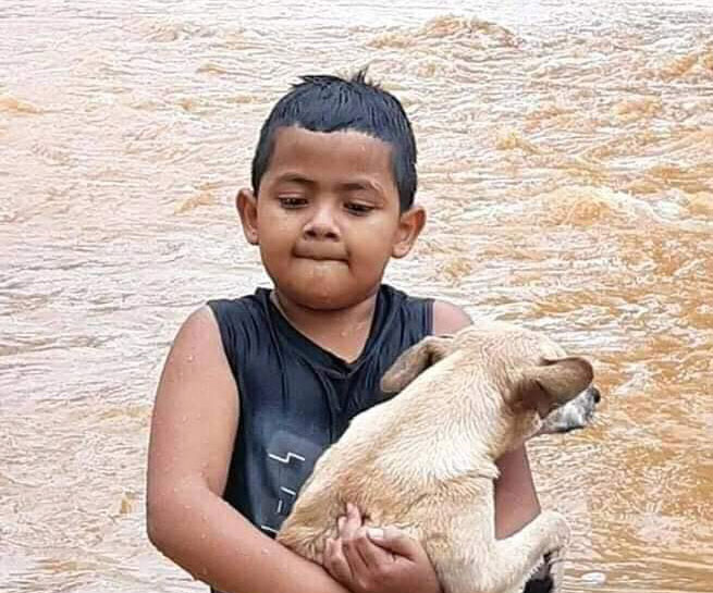 A boy rescues a dog from the flood in Honduras.
